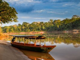 Through Our Lens - Peruvian Amazon Lodge Experience