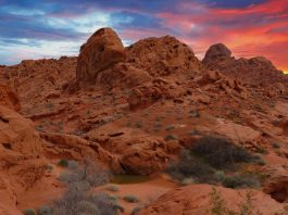 USA Road Trip - Valley of Fire State Park Nevada
